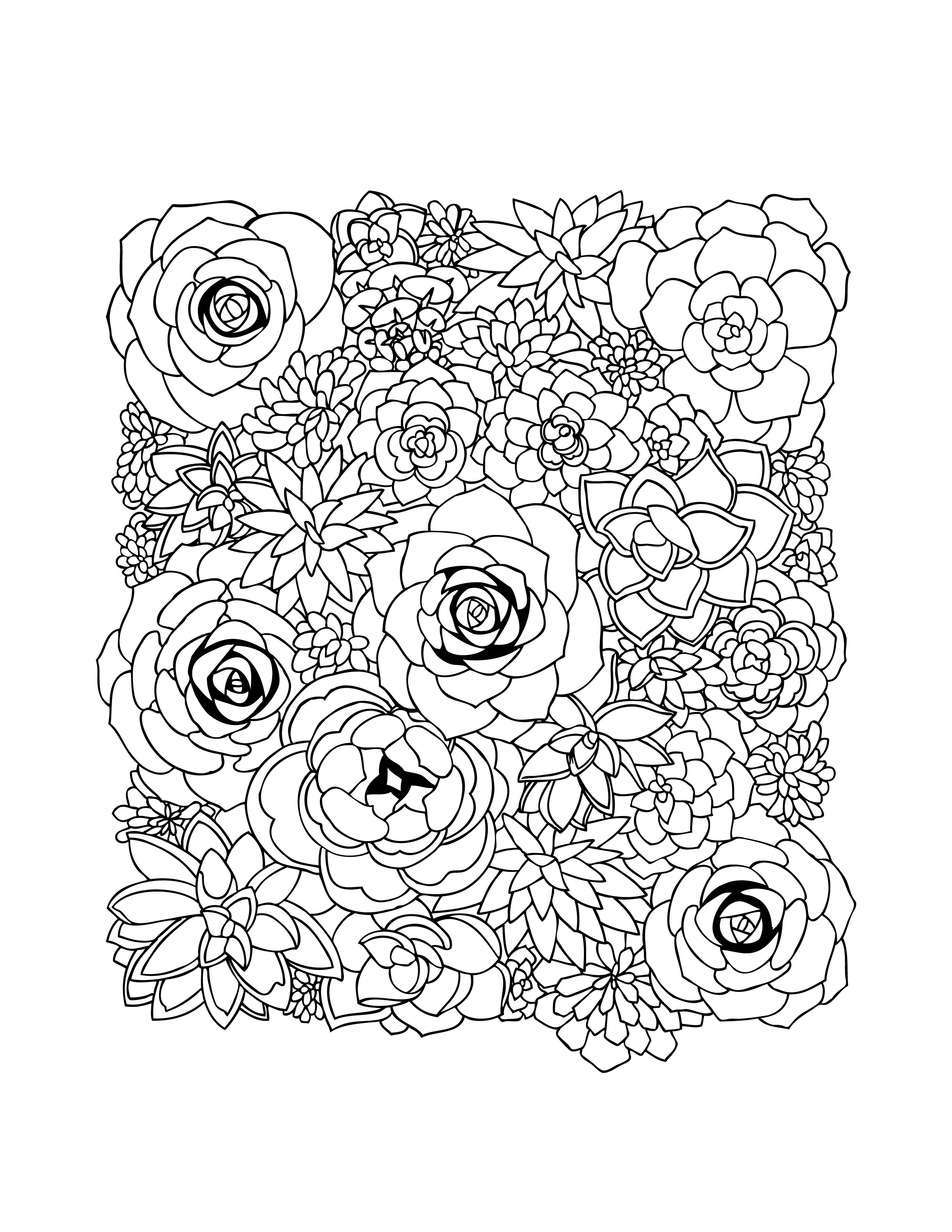 2550x3300 Free Coloring Page Of Succulents Boelter Design Co
