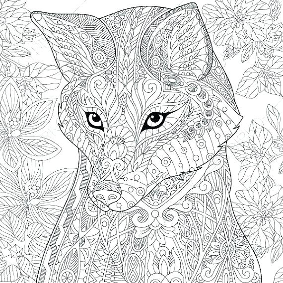 570x570 Red Fox Coloring Pages Red Fox Coloring Pages Fox For Coloring