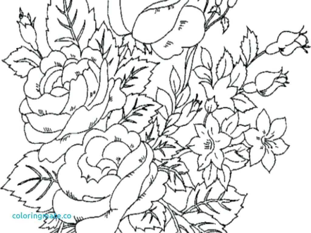 1024x768 Coloring Page Free Printable Advanced Coloring Pages Flower Pot