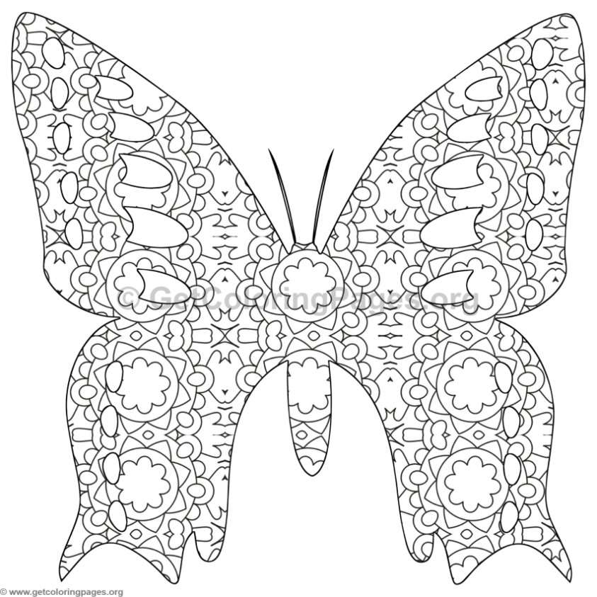 843x843 Detailed Butterfly Coloring Pages, Don Eat The Paste