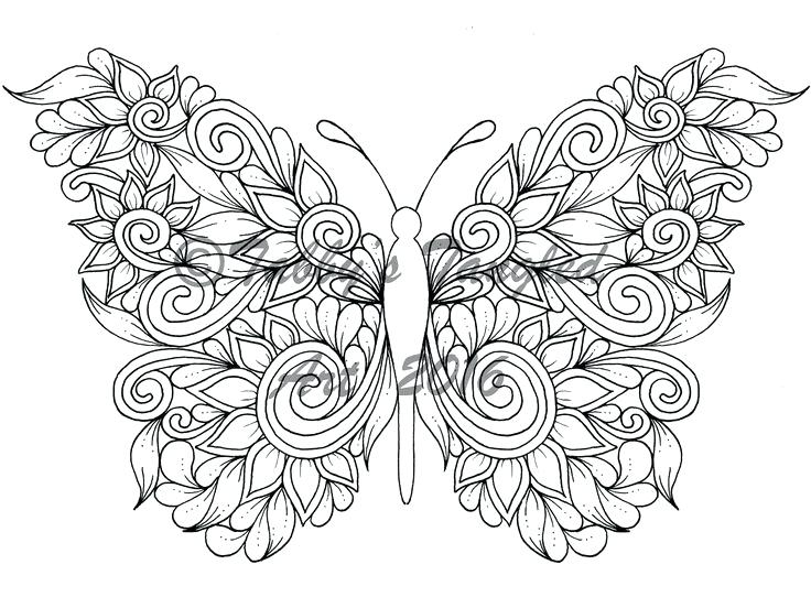 736x552 Detailed Butterfly Coloring Pages Beautiful Butterfly Coloring