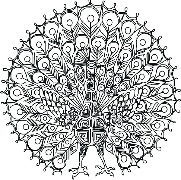 600x597 Detailed Butterfly Coloring Pages Detailed Coloring Pages Coloring