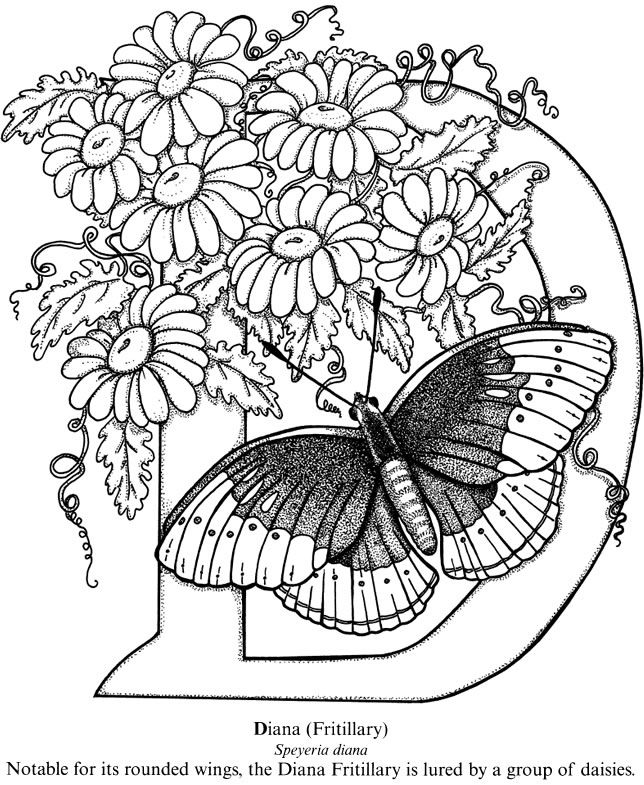 644x785 Wonderful Intricate Butterfly Coloring Pages For Newest Article