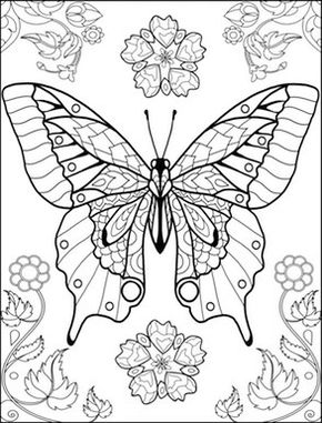 290x381 World Of Butterflies Coloring Page Coloring