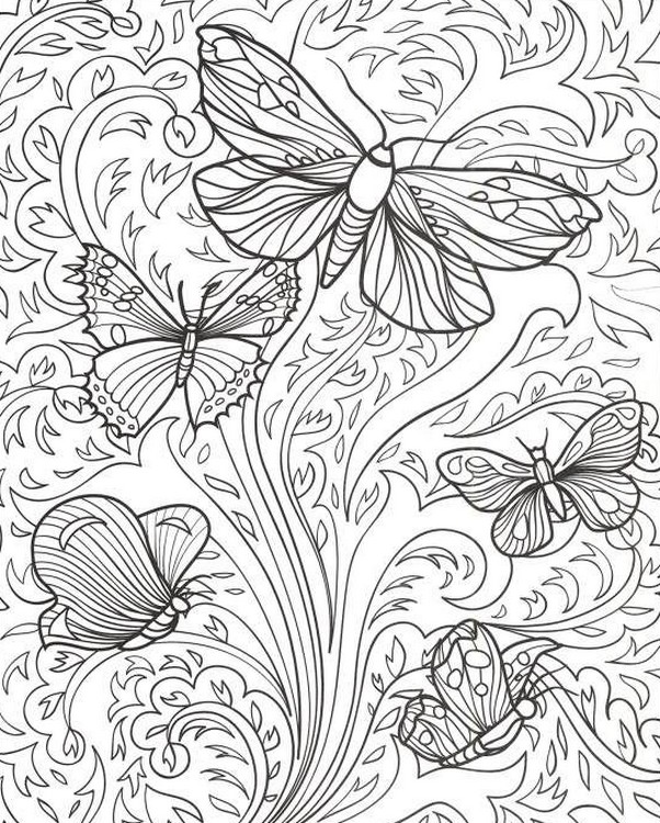 602x750 Adult Coloring Pages Butterflies