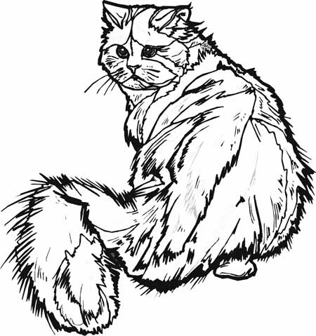 450x479 Hard Cat Coloring Pages