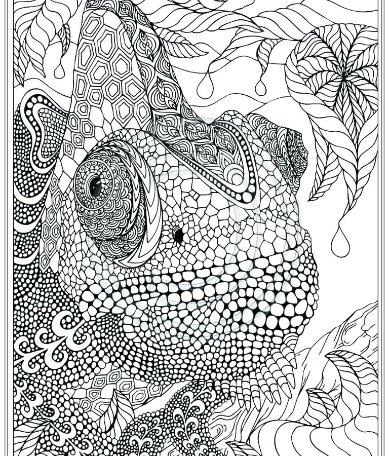 768x900 Intricate Coloring Pages Intricate Flower Coloring Pages Coloring