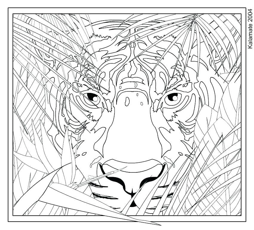 850x770 Intricate Coloring Pages Mandala Friendsofbjporg Adult Intricate