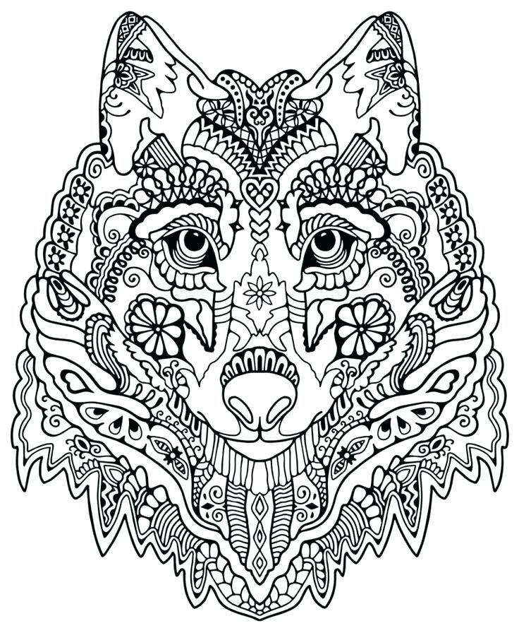 736x896 Intricate Design Coloring Pages Rosette Intricate Patterns