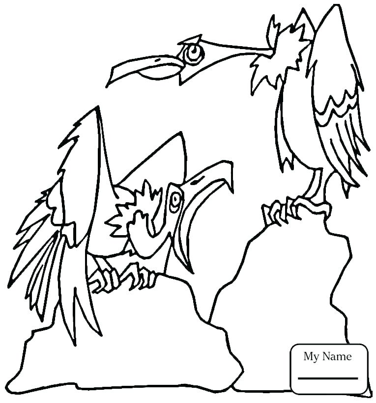 765x821 Hawk Coloring Pages Iowa Hawkeye Coloring Pages