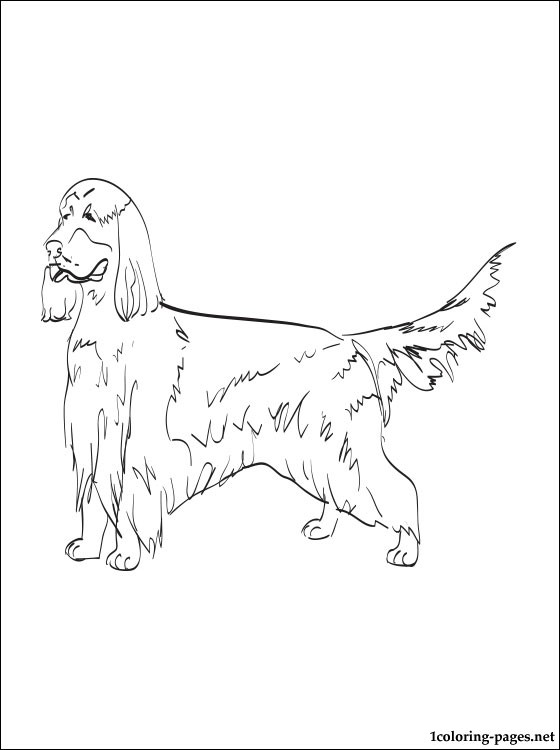560x750 American Coloring Pages