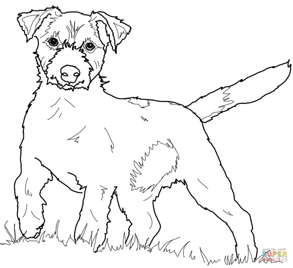 1125x1030 Jack Russell Coloring Pages