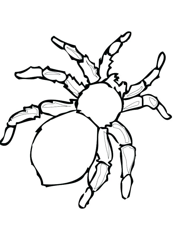 615x796 Spider Coloring Pages Black Widow Spider Coloring Page Iron Spider