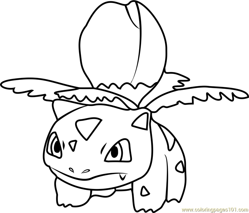 800x683 Ivysaur Pokemon Go Coloring Page