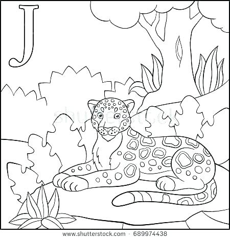 450x470 Jaguar Coloring Page Jaguar Coloring Pages J Coloring Pages
