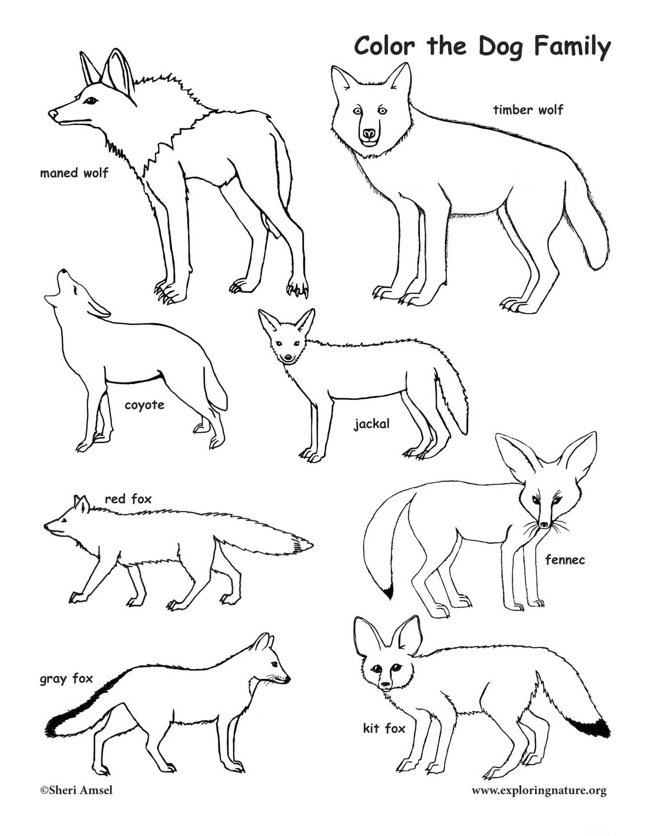 1275x1650 Dog Family Coloring Page