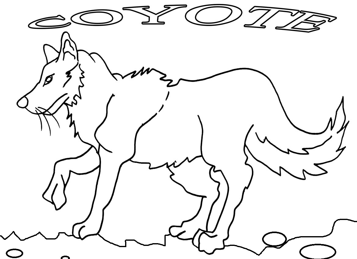 1170x850 Free Printable Coyote Coloring Pages Page