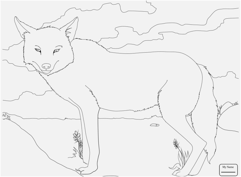 827x609 Top Rated Gallery Mammal Coloring Pages Amazing