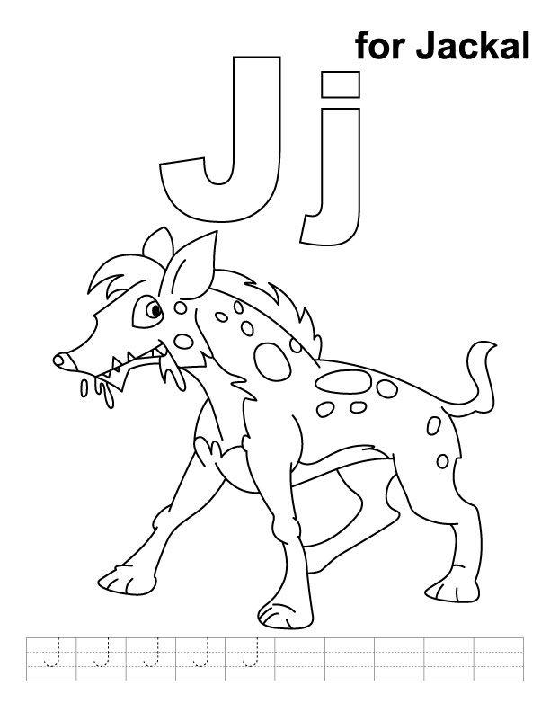 612x792 Jackal Coloring Page Glaucidium Costa Rican