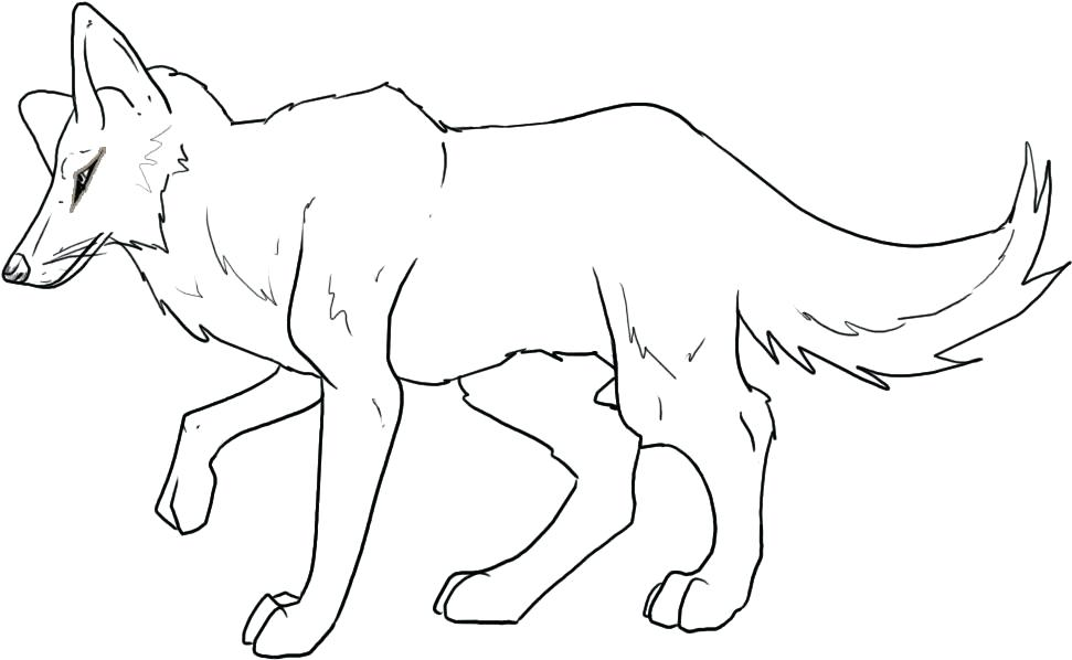 971x598 Coyote Animal Coloring Pages Coyote Jackal Coloring Pages For Kids