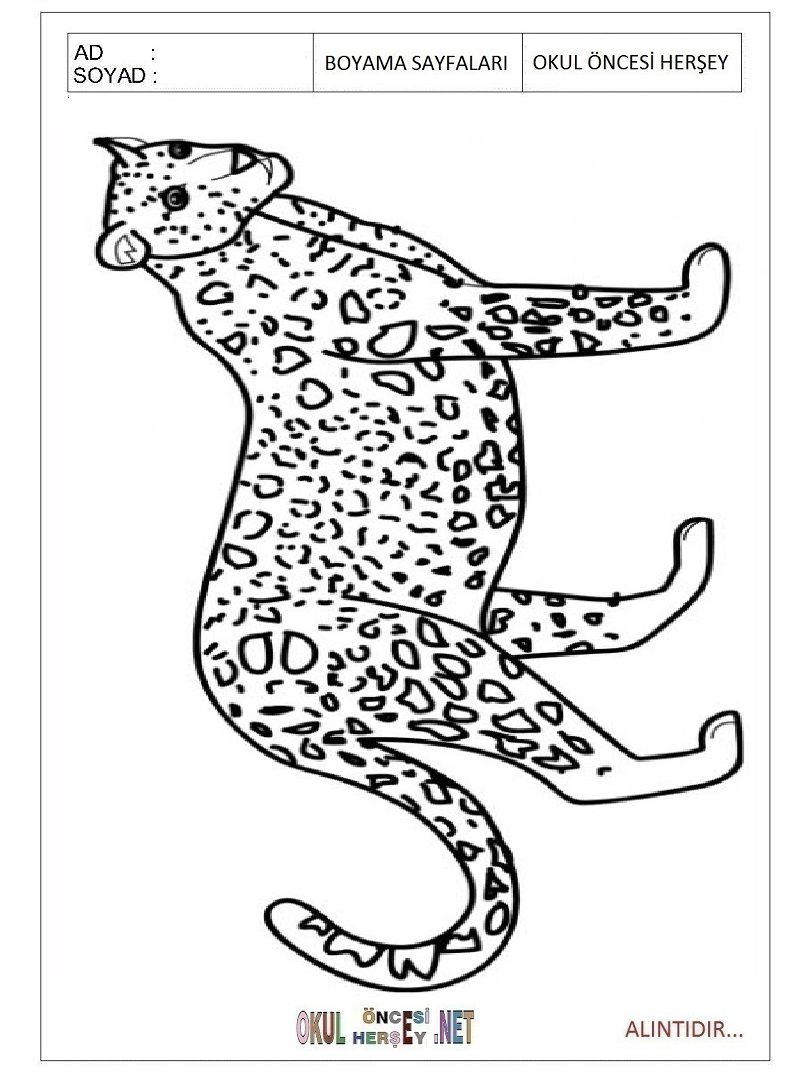 810x1080 Jaguar Coloring Page Beautiful Car Colouring Pages Realistic Baby