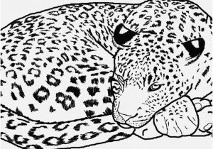 300x210 Jaguar Coloring Pages Picture Jaguar Coloring Pages To And Print