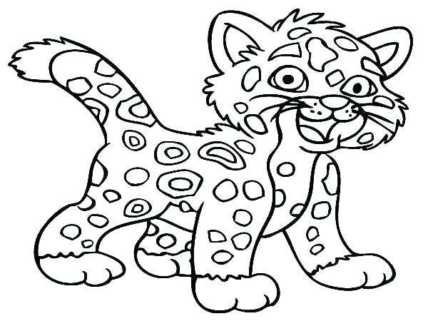 600x450 Baby Jaguar Printable Coloring Pages