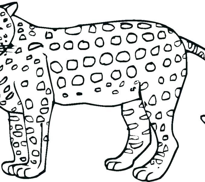 jaguar car coloring pages 24