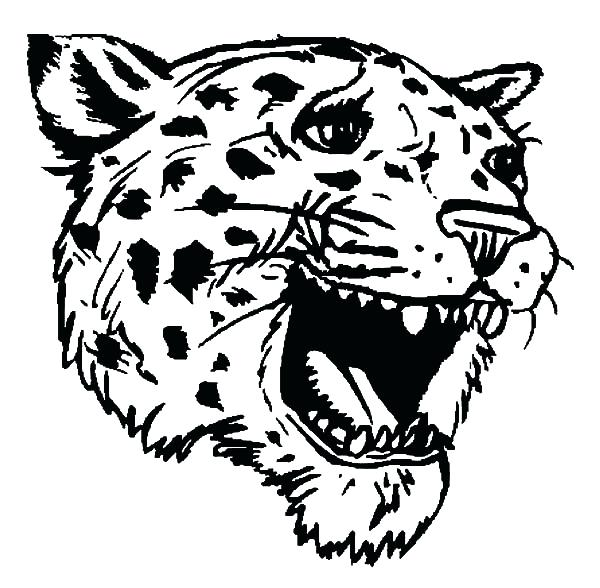 Jaguar Car Coloring Pages At Getdrawings Com