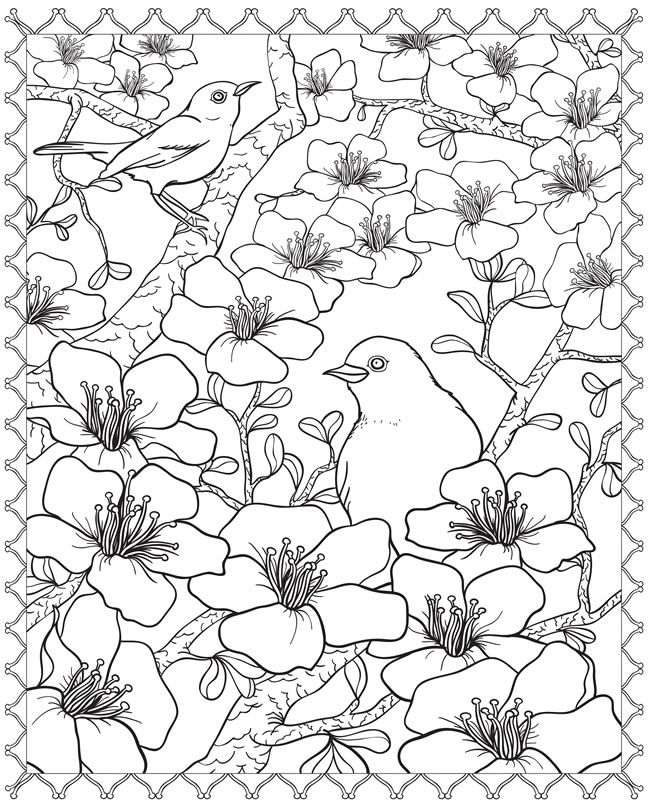 650x808 Japanese Cherry Blossom Coloring Pages Cherry Blossom Coloring
