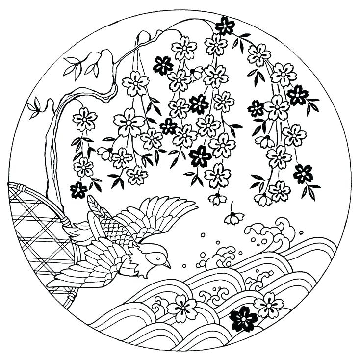 736x736 Japanese Coloring Books Cherry Blossoms With Bird Coloring Book