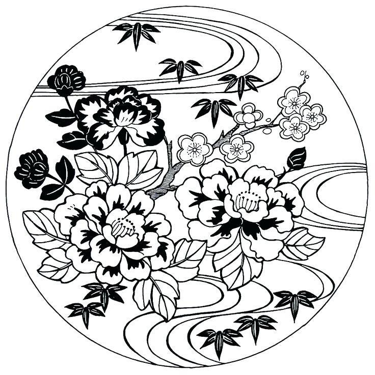 736x737 Best Of Cherry Blossom Coloring Pages And Peonies Cherry Blossoms