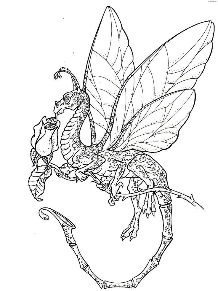 736x981 Japanese Dragon Coloring Pages Pages Next Image Dragons
