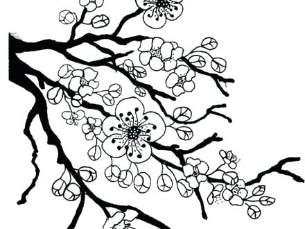 440x330 Geisha Coloring Pages Cherry Blossom Flower Coloring Page Fun