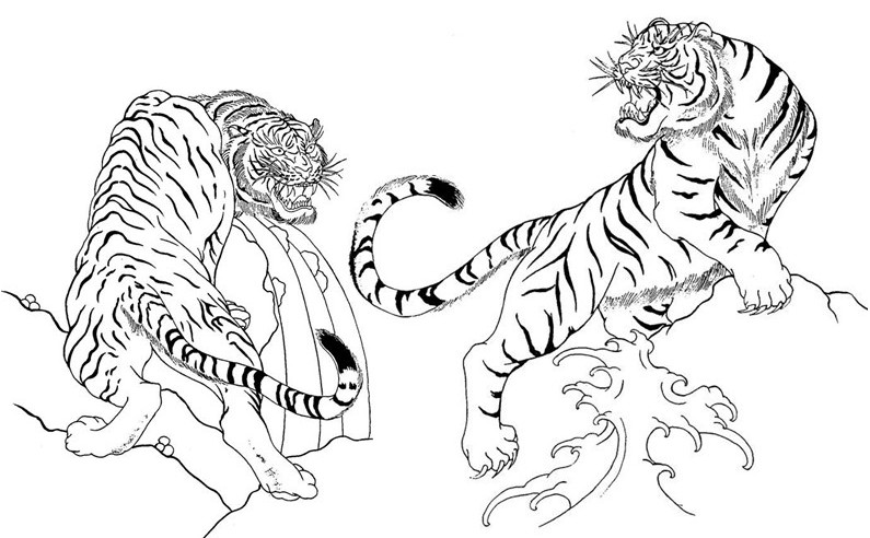 795x492 Adult Coloring Page Japan Japan Tigers