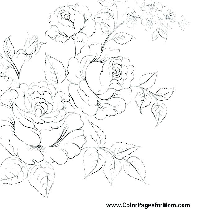 640x676 Jasmine Flower Colouring Pages Coloring Free Great With Flowers