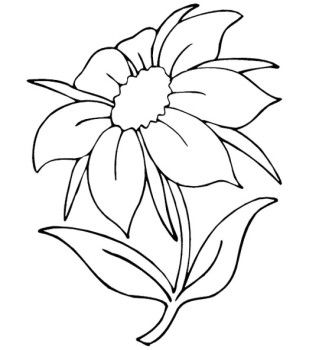 319x350 Summer Flowers Coloring Page Flowers Embroidery