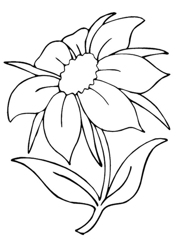 600x849 The Jasmine Flower Coloring Pages Printable Activities