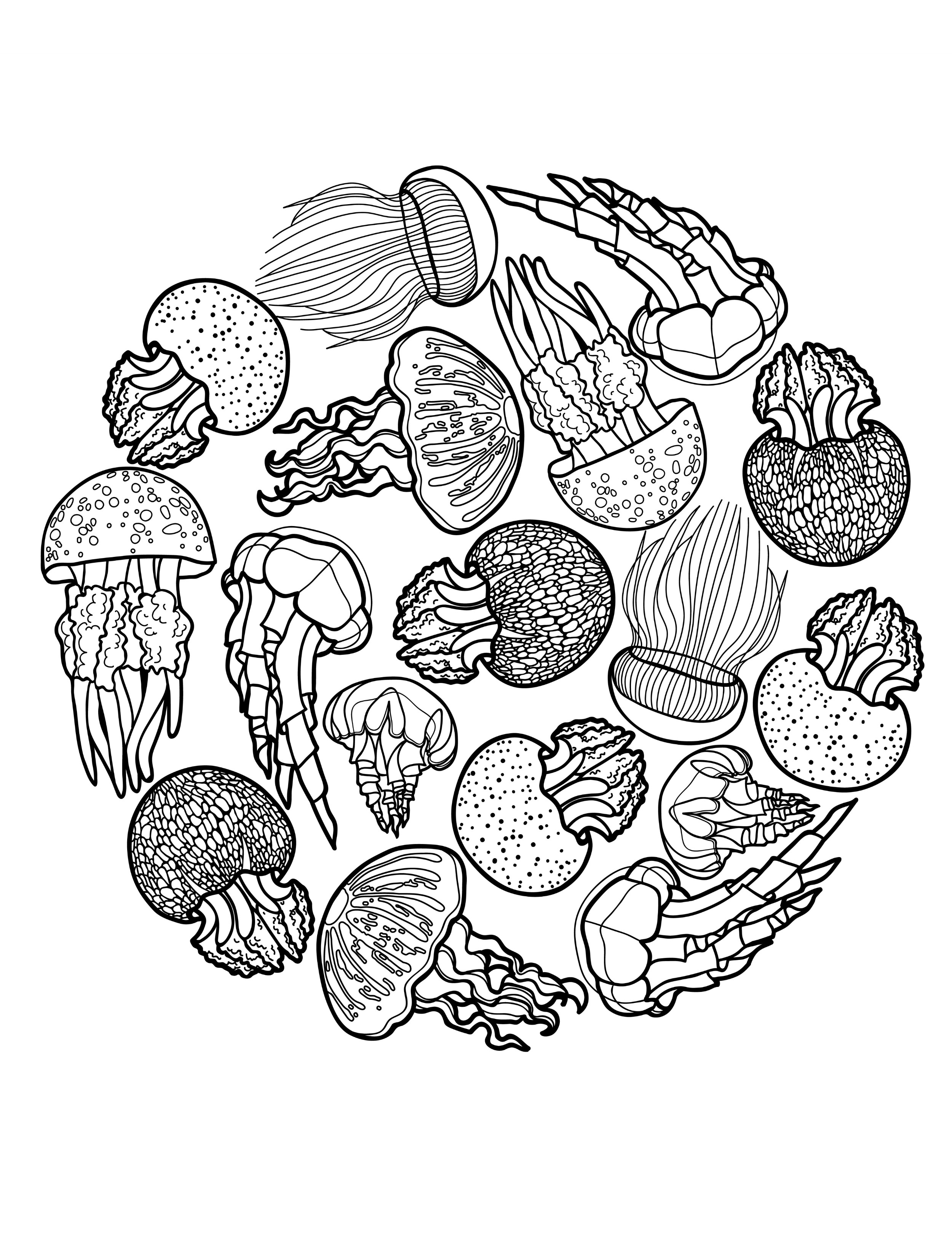 Jelly Coloring Pages