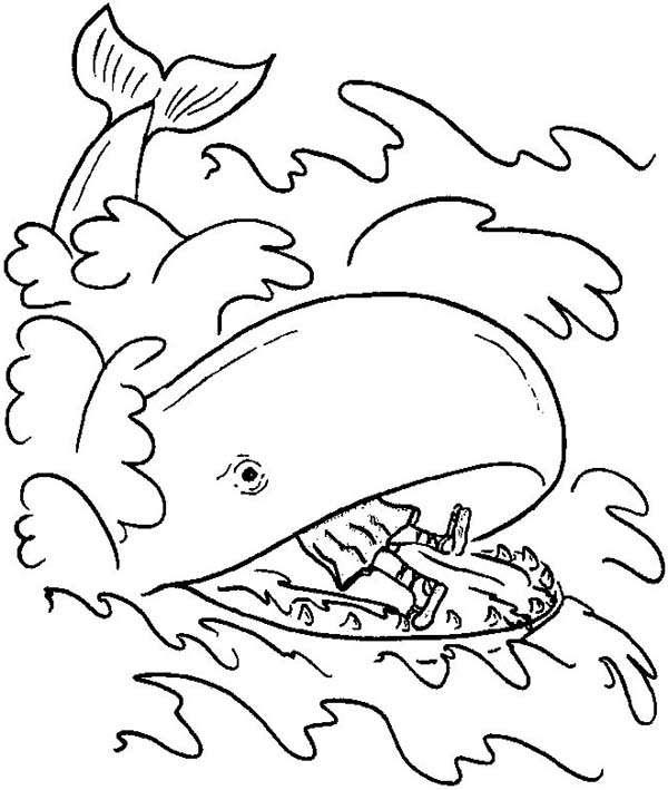image relating to Jonah and the Whale Printable named Jonah And The Whale Coloring Site at  Free of charge