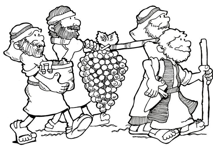 736x508 Joshua And Spies Coloring Pages The Story Lesson