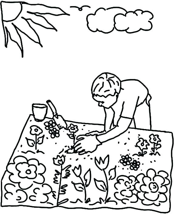 600x731 Plant Coloring Pages Pitcher Coloring Pages Colouring Pages