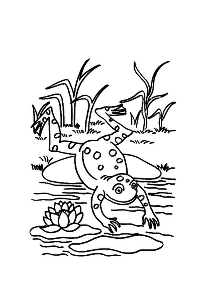 826x1169 Destiny Pistol Pete Coloring Page Jumping Frog Animal Pages