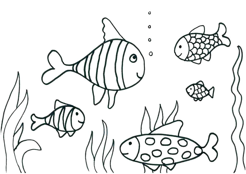 1024x723 Free Printable Fish Coloring Pages This Coloring Page For Kids