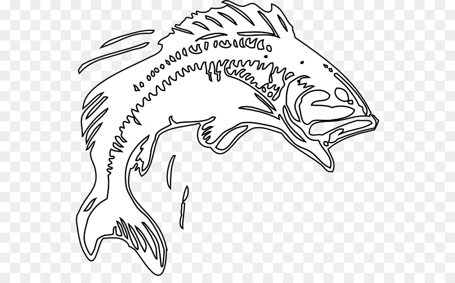 900x560 Joyous Bass Fish Outline Coloring Pages Best Place To Color Crafts