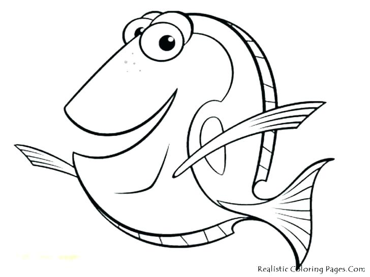 728x546 Trout Fish Coloring Pages Fishing Coloring Pages Fish Fishing
