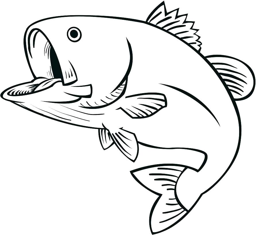 892x820 Jumping Fish Coloring Pages Bass Coloring Pages Dedupe Ideas