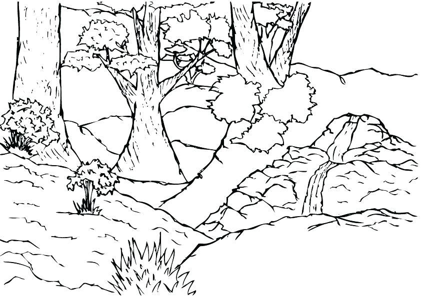 842x595 Jungle Coloring Page Jungle Coloring Sheets Jungle Scene Coloring