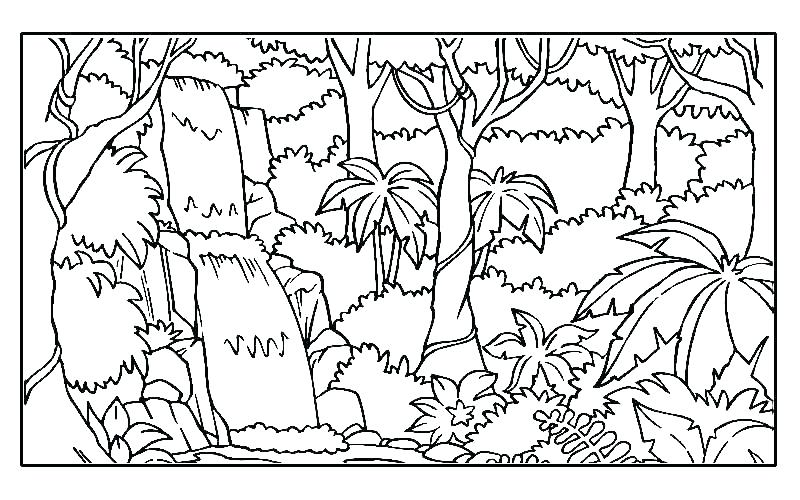 800x500 And And Jungle Animals Coloring Page Free To Print Out Printable