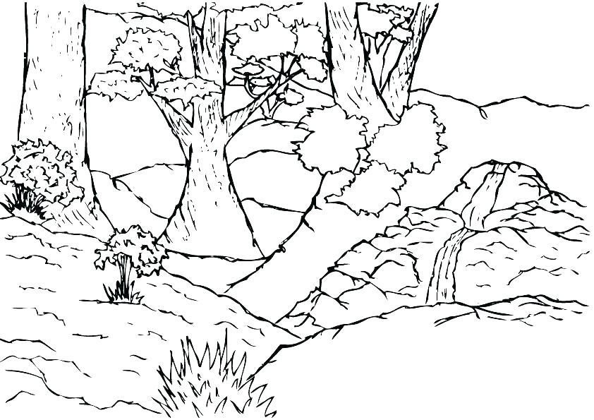 842x595 Jungle Coloring Pages Printable Vanda
